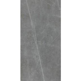 FPT60609D